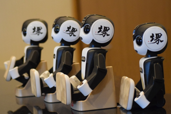 RoBoHoNs (Sakai Robot Tour version) await their guests