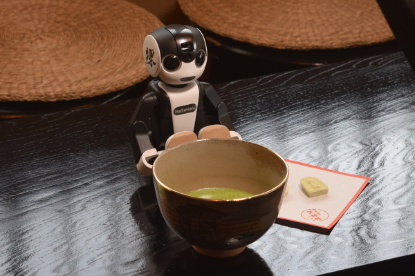 Japanese green tea with traditional sweets (and RoBoHoN)